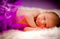 Syracuse Newborn, Infant and Baby Photography Studio